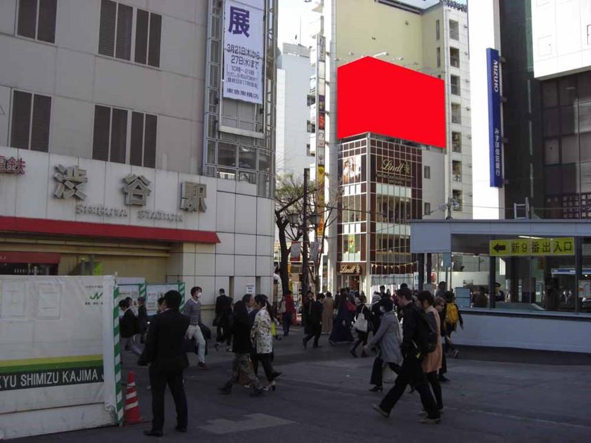 渋谷 Mビル